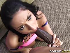 Busty Anissa Kate Prefers Huge Black Cock