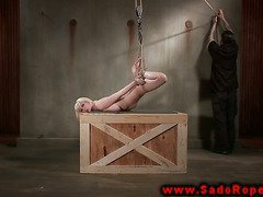 Hogtied submissive gets pussy whipped by her master