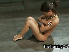 Hot babe hard whipped while working out