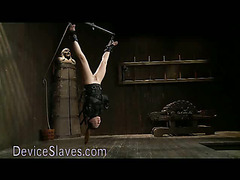 Babe in different upside down restraints