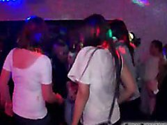 Party Girls Loving Cock at Hardcore Fuck Party